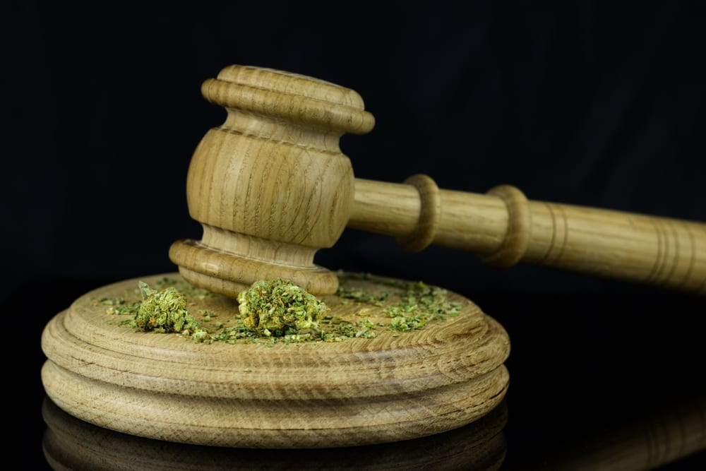 The Marijuana Data Collection Act gains bipartisan support