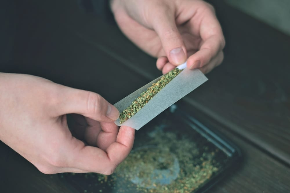 rolling a joint with cannabis shake