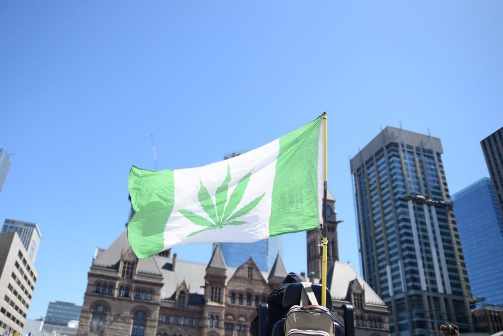 Marijuana flag at 420 rally