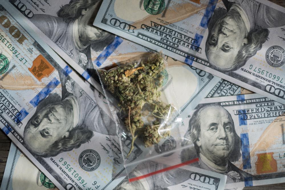marijuana sales money
