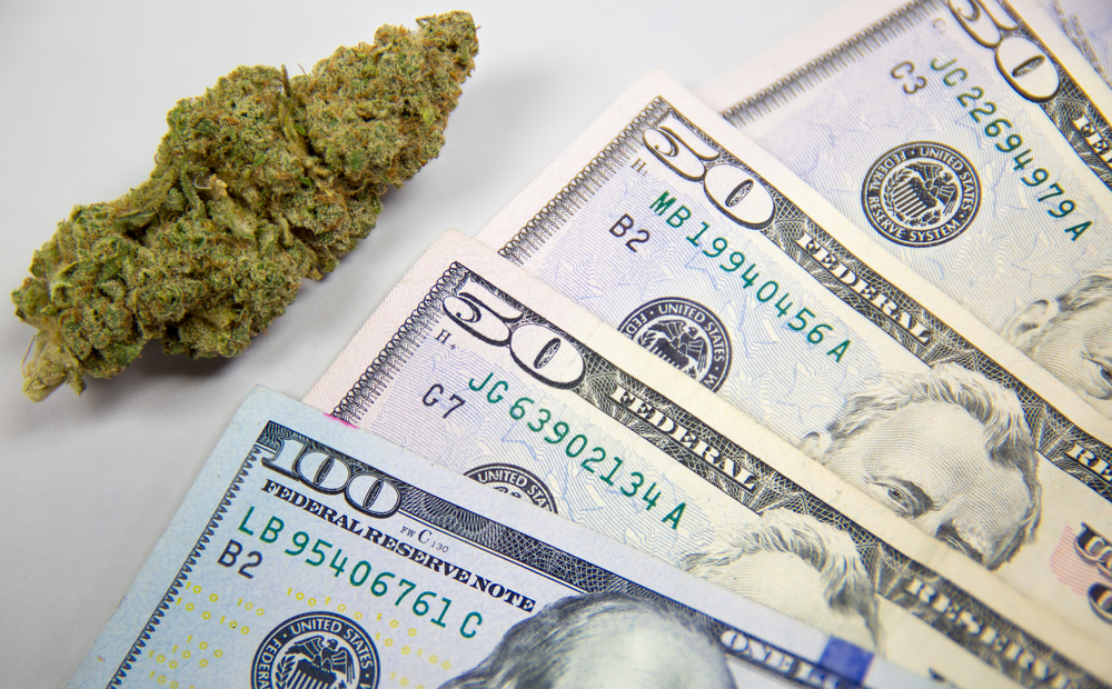 weed cannabis buds with money