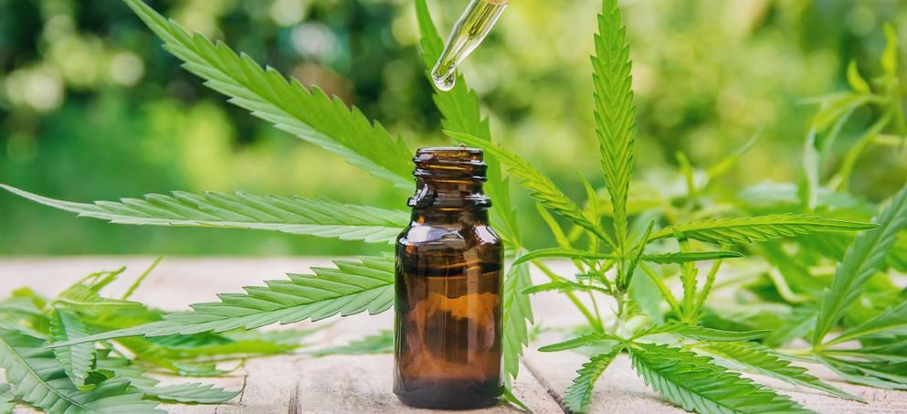 cannabis tincture dropper bottle