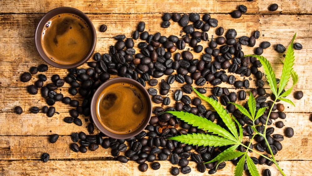 marijuana leaves on coffee beans