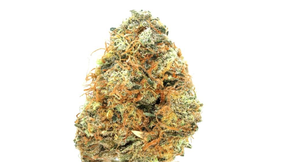 white fire of marijuana strains up close bud