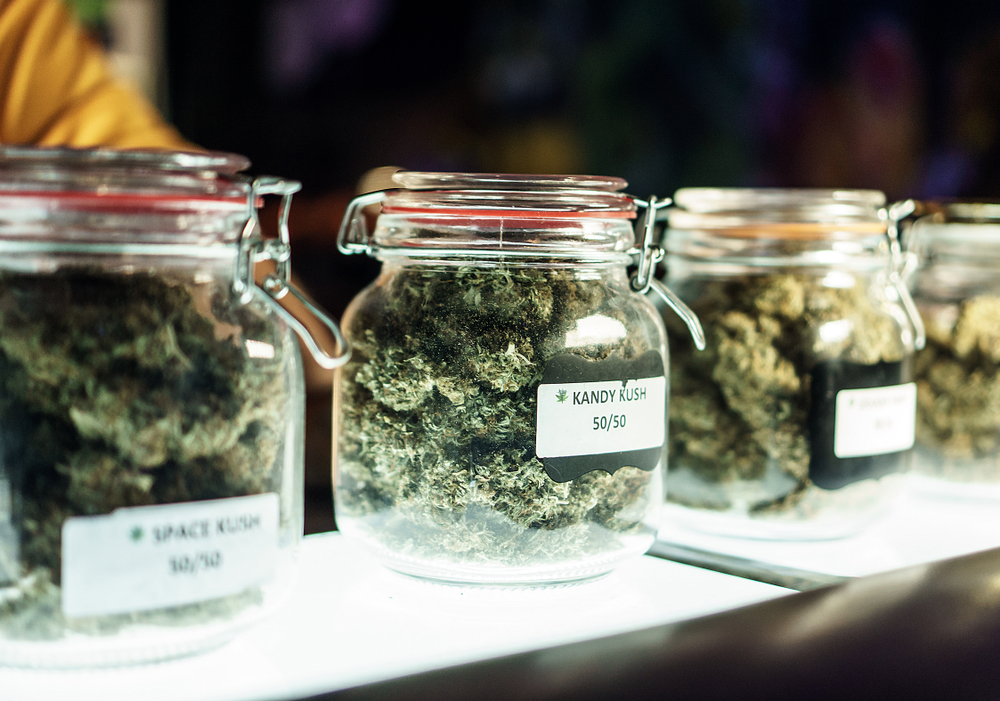 jars of cannabis in dmv